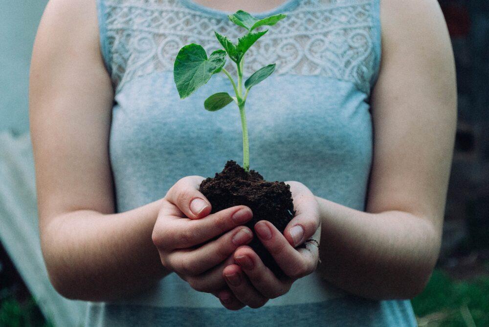 ビジネスと環境問題